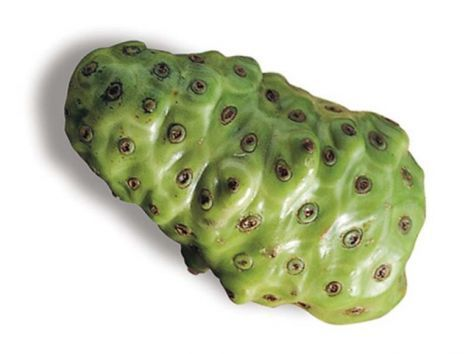 noni_fruit.jpg